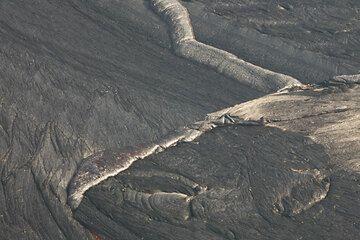 Elegant shapes on the lava lake crust. (Photo: Tom Pfeiffer)