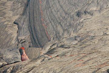 Thin, silvery crust of the lava lake. (Photo: Tom Pfeiffer)