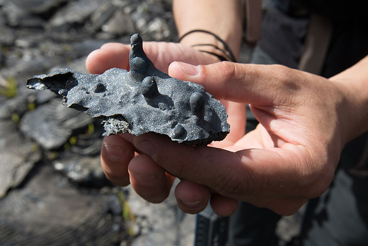 """Piece collected from debris at the bottom of the lava tube - a part of the tube's roof that consists of a coating of volcanic glass where dangling drops of molten rock formed small """"lava stalactites"""". (Photo: Tom Pfeiffer)"""
