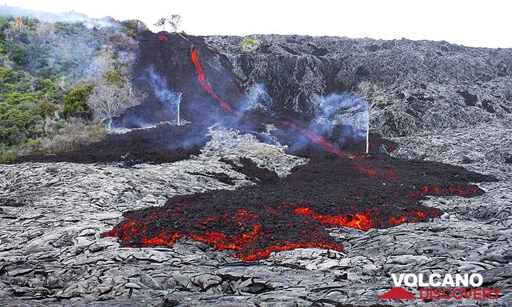 The first lava flows from Kilauea volcano (Hawai'?) to arrive in the coastal plain since March 2011 (5 Dec 2011) (Photo: Philip Ong)
