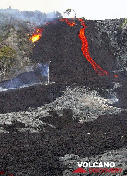 The leading edge of an 'a'a lava flow at the base of Pulama Pali, being fed from the Peace Day Fissure on Pu'u 'O'o vent on K?lauea volcano on December 4, 2011. A tree bursts into flame at the edge of the active lava flow. (Photo: Philip Ong)