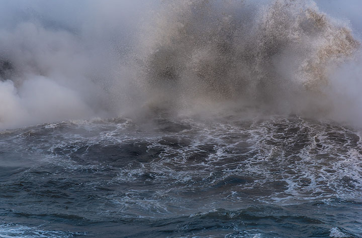 Moments later, it is drowned by a wave. (Photo: Tom Pfeiffer)