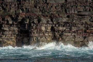 The sea cliff of the current lava flow field was formed by numerous lava flows erupted during the past 20 years or so. (Photo: Tom Pfeiffer)