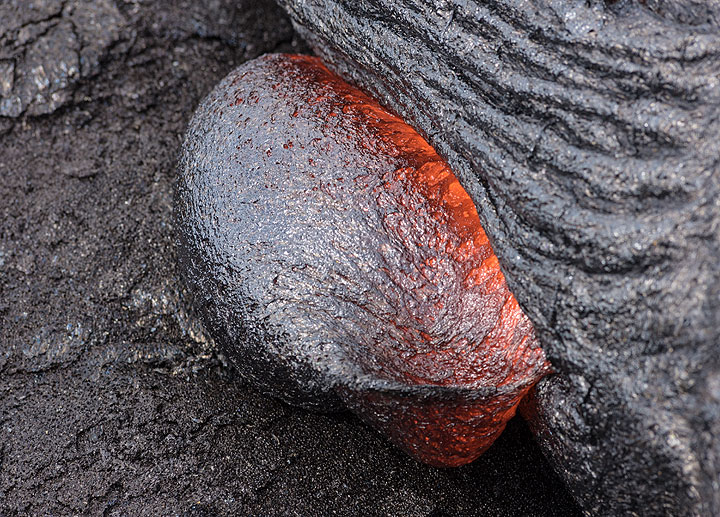 A bulging round lava blob squeezes itself out from the flow. (Photo: Tom Pfeiffer)