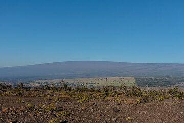 Morning view towards Mauna Loa (Photo: Tom Pfeiffer)