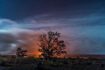 A single ohia tree silhouetted against the lava lake inside Halema'uma'u crater. (Photo: Tom Pfeiffer)