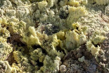 Fumarole vents at Suphur Banks encrusted with sulfur shells and crystals (Photo: Tom Pfeiffer)