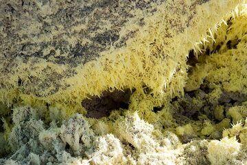 Sulfur needles at a fumarole. (Photo: Tom Pfeiffer)