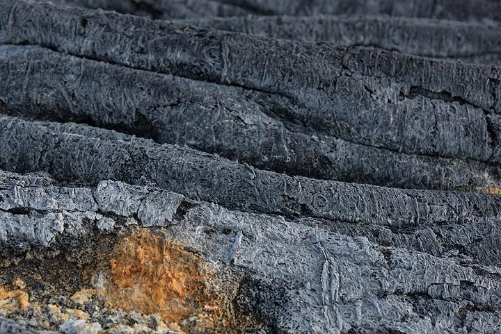 Old pahoehoe ropes from a hardened flow. (Photo: Tom Pfeiffer)