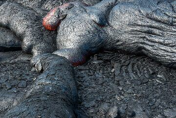 Old and fresh lava - after some time, they become nearly indistinguishable. (Photo: Tom Pfeiffer)