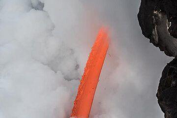 Orange and white (Photo: Tom Pfeiffer)
