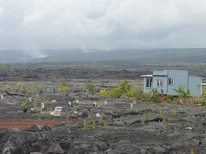 Day 2: Some new settlements atop the Pu´u O´o lava flows that covered a vast area since the start of the eruption in 1983. In the background, volcanic gasses are rising up above the largely underground path of the current lava flows to the ocean. (Photo: Ingrid Smet)