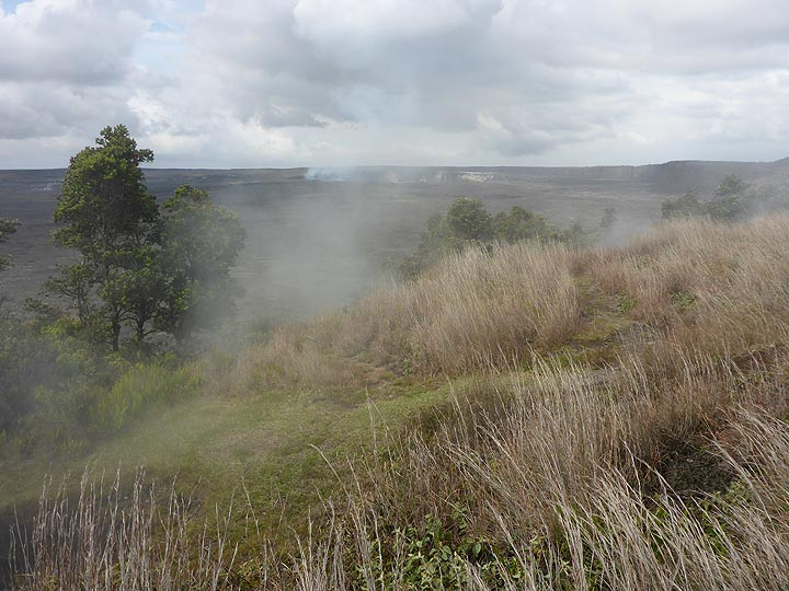Day 3: Steam rising up from vents along the northern rim of Kilauea caldera (Haleam´uma´u crater in the central background) (Photo: Ingrid Smet)