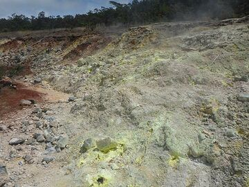Day 3: Sulphur Banks is an area N-NE of Kilauea´s caldera rim where volcanic gasses interacting with groundwater and rising up through deep-seated fractures deposited sulphur crystals among other minerals (Photo: Ingrid Smet)
