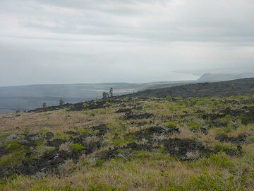 Day 3: View from the extensive lava fields south of the East Rift zone towards the coastline (Photo: Ingrid Smet)