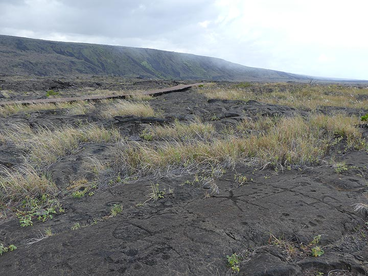 Day 3: The surface of older pahoehoe lava flows has been covered with many rock different petroglyphs (rock carvings), in the background the pali with dark coloured recent lava flows (Photo: Ingrid Smet)