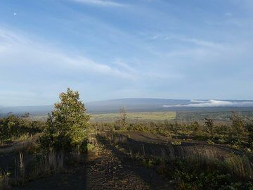 day 3: View towards Mauna Loa shield volcano, the largest volcano on earth (4169 m above sealevel and submarine ca. 5000 m to the ocean floor) (Photo: Ingrid Smet)