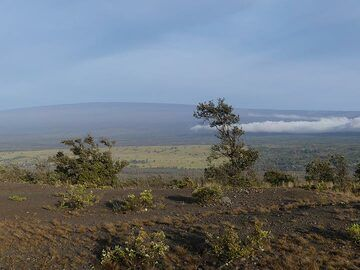 Day 3: Mauna Loa is the largest volcano on earth; 4169 m height above sealevel and submarine ca. 5000 m down to the ocean floor (Photo: Ingrid Smet)