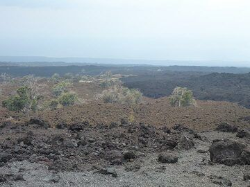 Day 4: View across a lava field with a´a flows of different ages (darkest are the youngest) from the pick-nick lookout (Photo: Ingrid Smet)