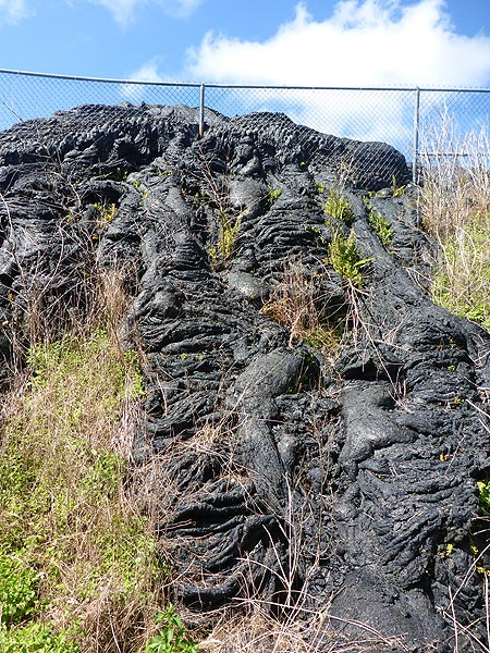 Day 5: A large lava flow ran through the outskirts of Pahoa town in 2015, destroying one home and almost destroying the wast transfer station located below this hill (Photo: Ingrid Smet)