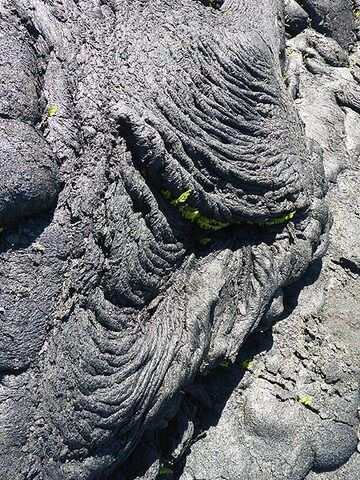 Day 5: Typical ropey texture of the 2015 pahoehoe lava flow in Pahoa (Photo: Ingrid Smet)