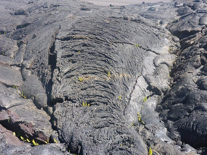 Day 5: Frozen ropey texture of pahoehoe lava flowing downhill (Photo: Ingrid Smet)