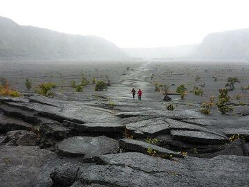 Day 6: View from the centre of the ´frozen´ Kilauea Iki lava lake towards the crater rim where we started the hike earlier on. (Photo: Ingrid Smet)