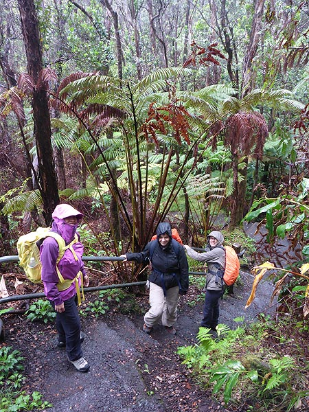 Day 6: The Kilauea Iki trail starts in tropical rain forest on the crater rim, and today the weather made clear where all the wet tropical vegetation on Hawaii comes from... (Photo: Ingrid Smet)