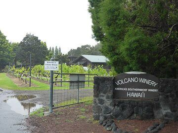 Extension day 1: Grey clouds and wet weather are perfect to do some wine and tea tasting in America´s southernmost winery? (Photo: Ingrid Smet)