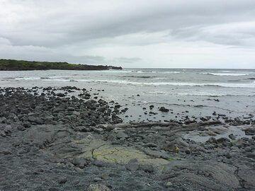 Extension day 1: Punalu´u Black Sand Beach (Photo: Ingrid Smet)