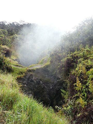 'Steaming Bluff' is a section alont the northern edge of Kilauea's summit caldera where hot water vapour rises up from cracks (Photo: Ingrid Smet)
