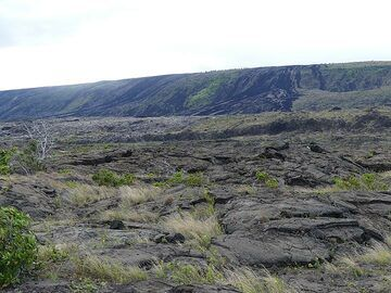 View from the lava fields near the coast towards the pali from which the darker coloured Mauna Ulu lava flows ran down in the early 1970s (Photo: Ingrid Smet)