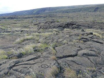 Native Hawaiians used the surface of the coastal lava flows for their rock art (Photo: Ingrid Smet)