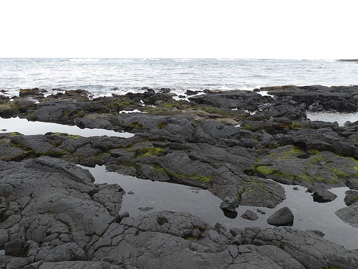 Unfortunately, the famous green sea turtles that are usually sunbathing at Black Sand Beach were nowhere to be found (Photo: Ingrid Smet)