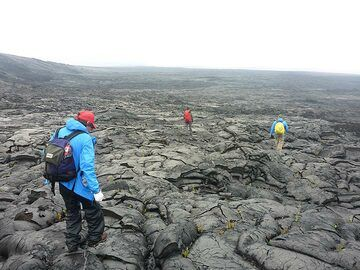 We eventually have to drag ourselves away from the active lava flow fronts and start our 3 hour hike back to the end of the Chain of Craters road (Photo: Ingrid Smet)