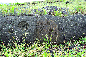 Hawaii042013rdIMG3974.jpg (Photo: Yashmin Chebli)