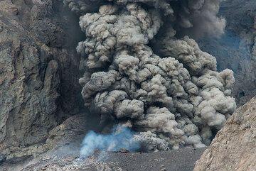 Ash plume. (Photo: Tom Pfeiffer)