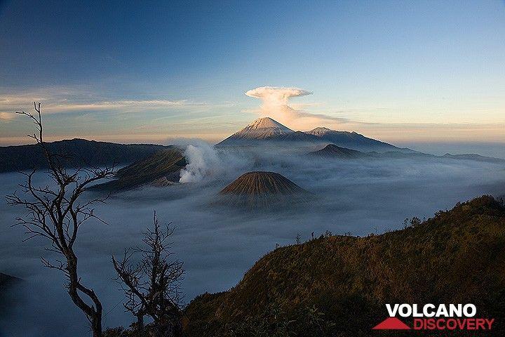 The caldera in the morning, Semeru with its umbrella cloud (c)