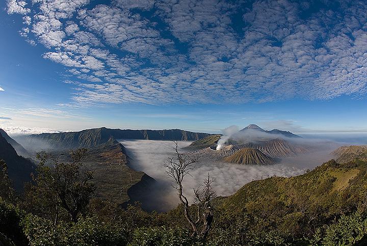 Die riesige Tengger Kaldera am Morgen  (Photo: Tom Pfeiffer)
