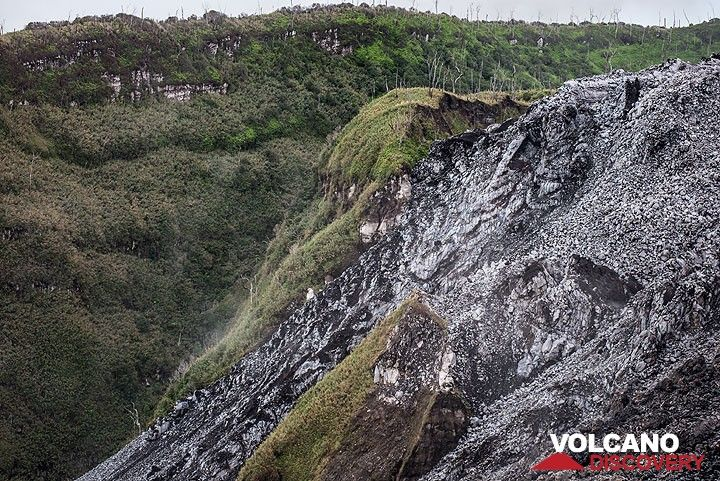 The present-day lava dome has filled and overspilled an inner crater (remnant of an older dome), small parts of which are still visible as vegetated remnants between the younger flows. (Photo: Tom Pfeiffer)