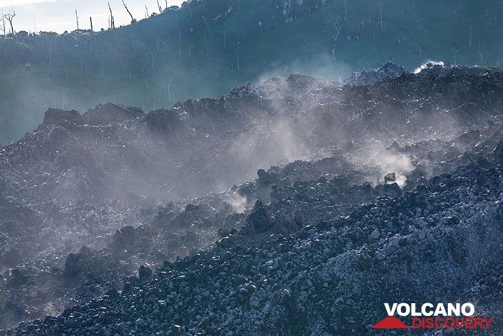 Zoom onto the surface of the most recent lava flow. (Photo: Tom Pfeiffer)