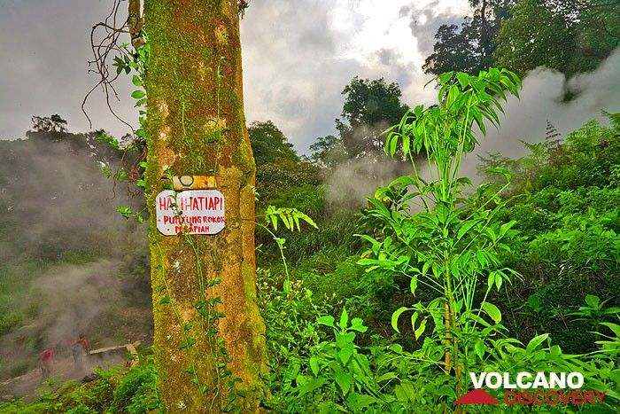 "Warning (""Hati-Hati"") at the tropical forest & boiling mud pools of Cipanas (Photo: Tobias Schorr)"