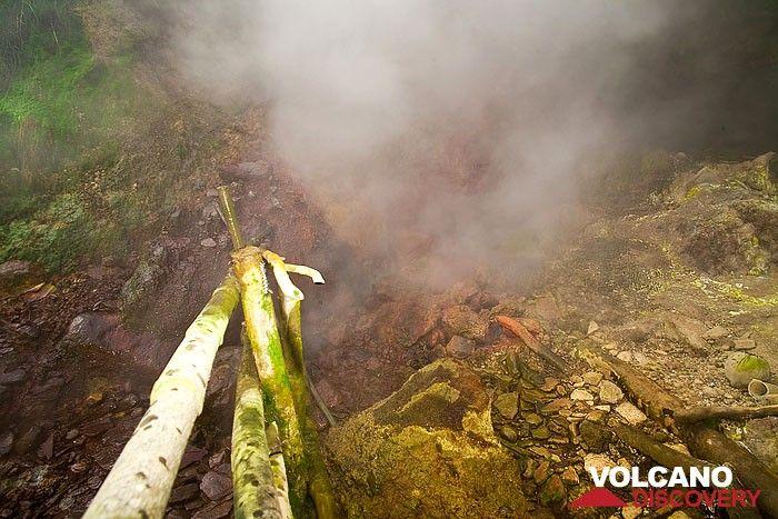 Hot steam  (Photo: Tobias Schorr)