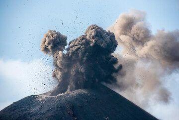 Ash eruption on 20 Nov afternoon. (Photo: Tom Pfeiffer)