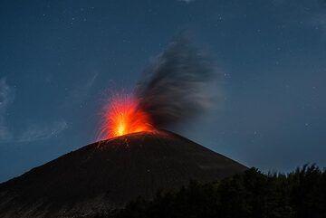 krakatau_k19752.jpg (Photo: Tom Pfeiffer)