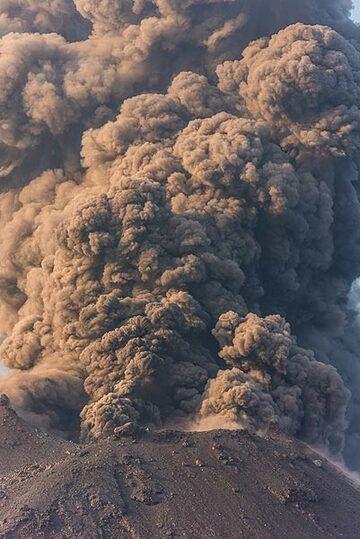 Dense ash column rising from Anak Krakatau  (Photo: Tom Pfeiffer)