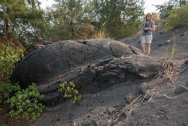 Another old lava bomb that merits a textbook entry, resembling a giant turtle. (Photo: Tom Pfeiffer)