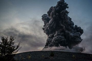 Dense ash plume from a moderately strong explosion seen from the edge of the forest on 14 Oct. (Photo: Tom Pfeiffer)