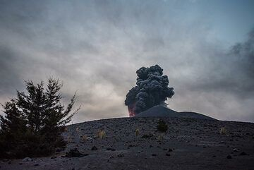 A mild strombolian eruption seen from the end of the forest on Anak Krakatau (13 Oct) (Photo: Tom Pfeiffer)