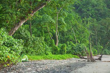 krakatau_g15400.jpg (Photo: Tom Pfeiffer)